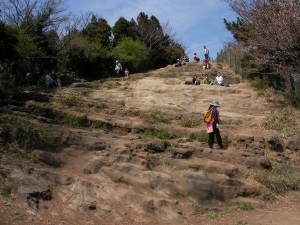 天園・太平山の全景